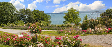 Idyllic lakeside promenade with roses and lavender, mountain vie. W lake chiemsee, bavarian landscape royalty free stock photos