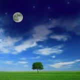Idyllic landscape. Harmony between day and night royalty free stock image