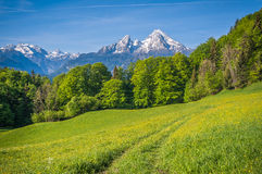 Idyllic landscape in the Alps with hiking path and mountains Stock Photos