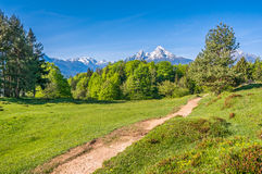 Idyllic landscape in the Alps with hiking path and mountains Royalty Free Stock Photography