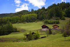 Idyllic landscape in the Alps in springtime with traditional mountain chalet and fresh green mountain pastures with flowers Royalty Free Stock Images