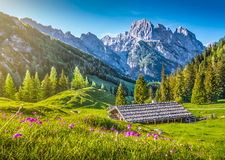 Idyllic landscape in the Alps with traditional mountain chalet at sunset Stock Images