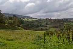 Idyllic landscape in croatia Stock Photos