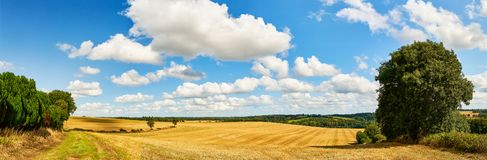 Idyllic landscape with field and sky in summer. Idyllic landscape with field and sky as a panorama in summer in Brittany in France royalty free stock photography