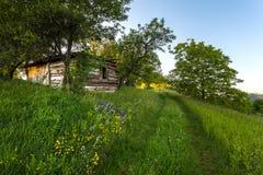 Idyllic landscape with green grass Stock Photos