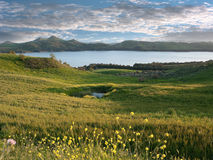 Idyllic Landscape With Lake. Idyllic landscape of yellow flowers, green pasture and blue water of lake and dramatic sky Royalty Free Stock Photography