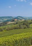 Idyllic Landscape near Asti in Piedmont Royalty Free Stock Photos