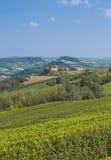 Idyllic Landscape near Asti in Piedmont royalty free stock photos