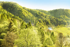 Idyllic landscape of Polish mountains Royalty Free Stock Image