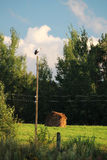 Idyllic landscape in Russian countryside Stock Photography