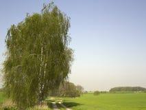 Idyllic landscape at spring time. Idyllic rural landscape at spring time in Hohenlohe (Germany Royalty Free Stock Images