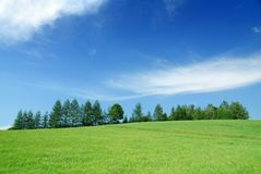 Idyllic landscape, view of green fields and blue sky. Idyllic landscape, view of green fields, blue sky and white clouds in background royalty free stock photography