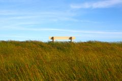 Idyllic lawn with bench Stock Photo