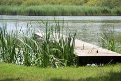 Idyllic location beside a lake Stock Photography