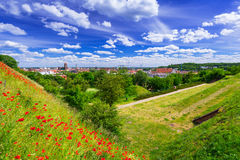 Idyllic meadow in city centre of Gdansk Stock Images