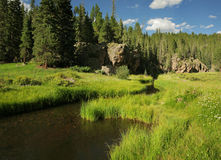 Idyllic Meadow near Valles Caldera Royalty Free Stock Photography