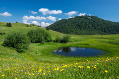 Idyllic mountain landscape. Meadows at Gornje bare, Sutjeska National Park Royalty Free Stock Photo