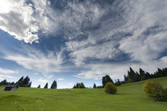 Idyllic mountain meadow with clouds and trees Stock Image