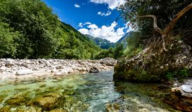 Idyllic mountain river in Lepena valley, Soca - Bovec Slovenia. Stock Images