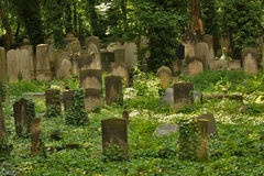 Idyllic old graveyard in Berlin Stock Image