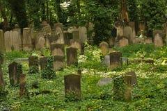 Idyllic old graveyard in Berlin Stock Image