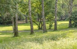 Idyllic park scenery Stock Image