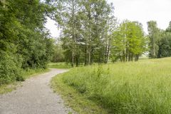 Idyllic park scenery Royalty Free Stock Photo