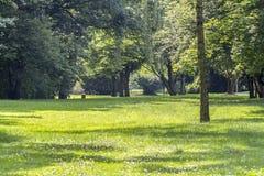 Idyllic park scenery Stock Photo
