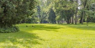 Idyllic park scenery Stock Photography