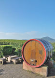 Idyllic Place at german Wine Route,Germany Royalty Free Stock Photos