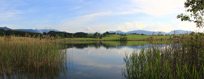 Idyllic pond in the evening, bavarian landscape Stock Photography