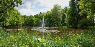 Idyllic pond with fountain and globeflowers at springtime Royalty Free Stock Photo