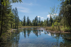 Idyllic pond with water reflection - natural fount. In the alps Royalty Free Stock Photos