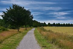 Free Idyllic Route For Walking Alone Through The Fields Royalty Free Stock Photography - 192244277