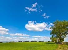 Idyllic rural farmland, Cotswolds UK Stock Photo