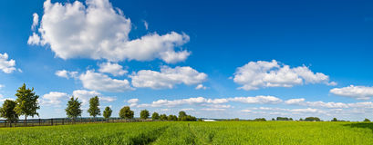 Idyllic rural farmland, Cotswolds UK Royalty Free Stock Images