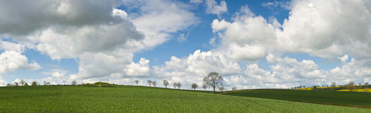 Idyllic rural landscape, Cotswolds UK Royalty Free Stock Photos