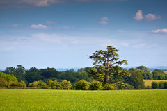 Idyllic rural landscape, Cotswolds UK Stock Images