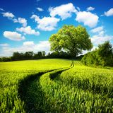 Idyllic rural landscape Royalty Free Stock Photography