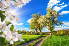 Idyllic rural landscape in spring Royalty Free Stock Photography