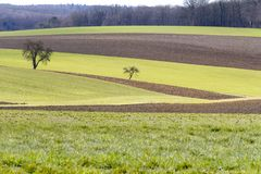 Idyllic agriculture scenery at early spring time. Idyllic and rural panoramic scenery with fields and meadows in Hohenlohe, a area in Southern Germany at early Royalty Free Stock Photography