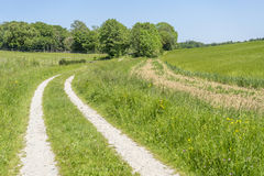 Idyllic rural scenery. With field path at spring time in Southern Germany Stock Photo