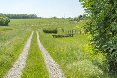 Idyllic rural scenery. With field path at spring time in Southern Germany Royalty Free Stock Photos