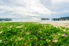 Idyllic Scene Beach at Samed Island,Thailand Stock Photos