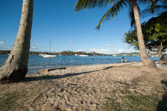 Idyllic scene by Noosa River. Royalty Free Stock Photography