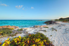 Idyllic scenery of Caribbean sea Royalty Free Stock Photo