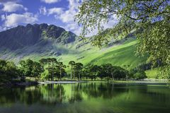 Idyllic scenery of English Lake District in springtime. Trees growing on lakeshore and green hill reflecting in lake water.Tree branches in foreground and royalty free stock photography