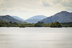 Idyllic scenery of Killarney lake. In Ireland royalty free stock image