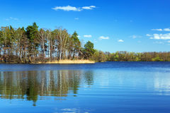 Idyllic scenery of the lake Royalty Free Stock Photos