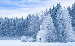Idyllic serene panoramic winter landscape snowy frosty forest Stock Photos